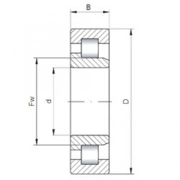 190 mm x 340 mm x 120 mm  ISO NJ3238 cylindrical roller bearings