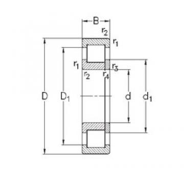 105 mm x 260 mm x 60 mm  NKE NUP421-M cylindrical roller bearings