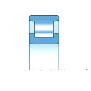 100,000 mm x 180,000 mm x 34,000 mm  NTN N220E cylindrical roller bearings