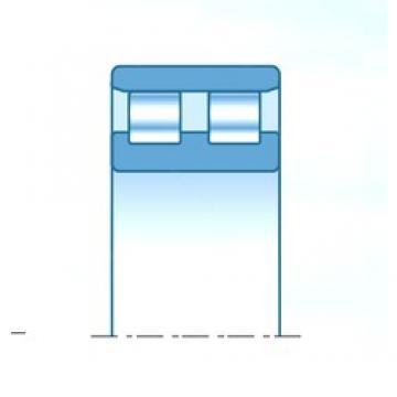240 mm x 320 mm x 80 mm  NTN NN4948C1NAP4 cylindrical roller bearings